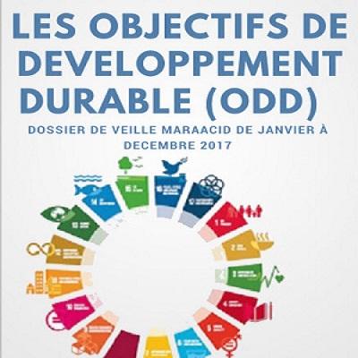 Dossier de veille : Les objectifs de développement durable en 2017