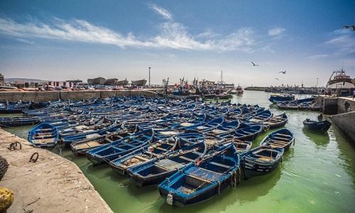 Lettre de veille CND Maraacid Pêche Novembre 2017
