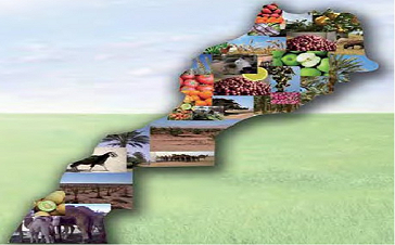 Veille Agriculture