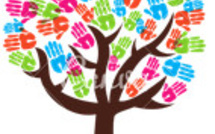 Développement Social du 27/11 au 01/12/2017