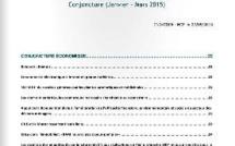 New : Publication de lettres de veille par le Centre National de Documentation