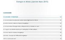 """Publication de la lettre de veille  CND  Maraacid """" Energie et Mines """""""